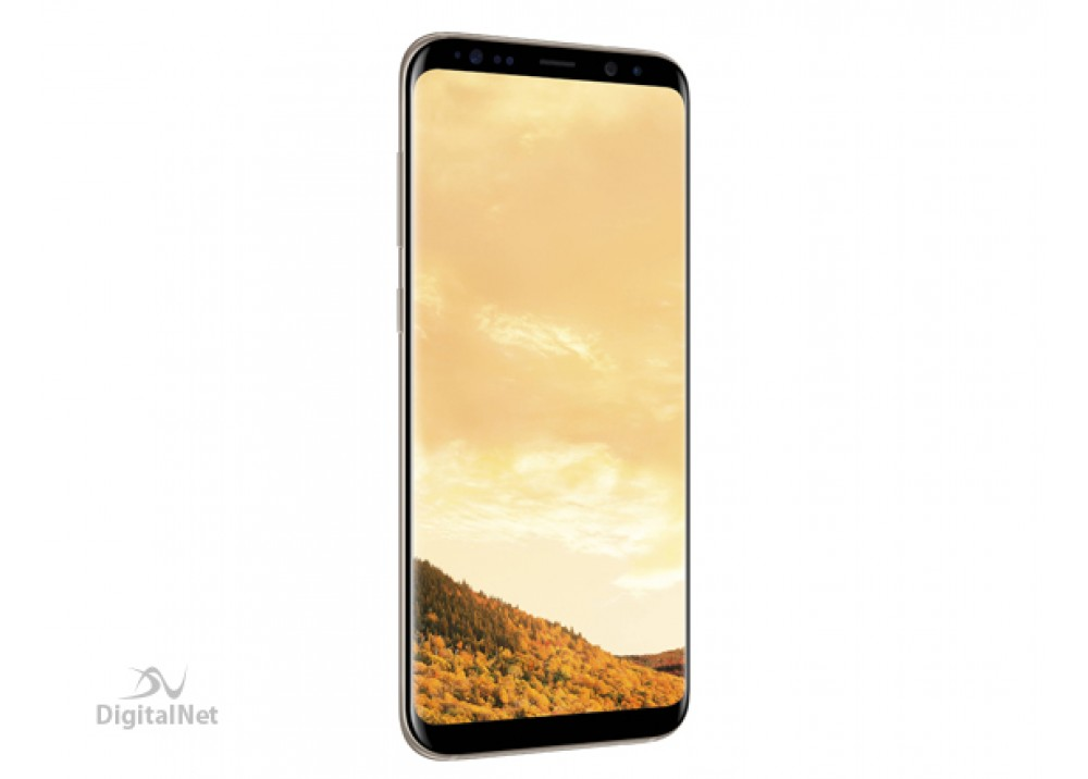 SAMSUNG GALAXY S8 PLUS G950 64G DUAL GOLD